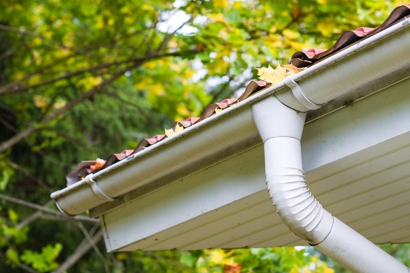 Gutter Cleaning West Auckland