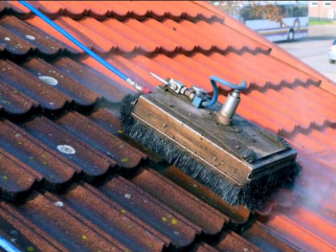 roof cleaning Auckland